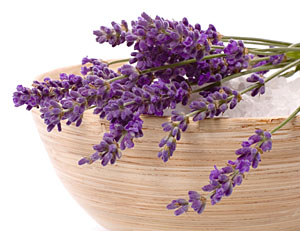 lavender for bath